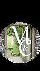 Modèle logo ellipse V1.png