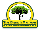 the branch manager tree services logo