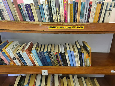 South African Fiction.jpg