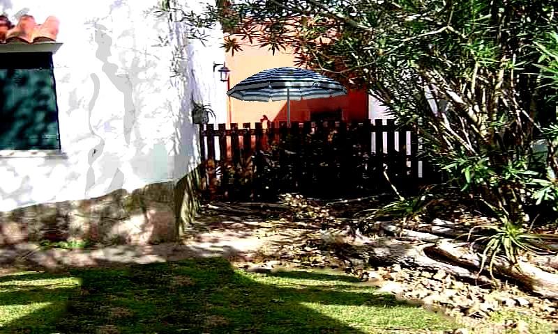 jardin patio cercado