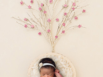 Ruby's newborn photo session. Professional photographer based in Willenhall, Walsall.