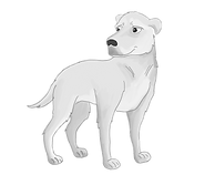 Rollo_character_illustration1BW (002).pn