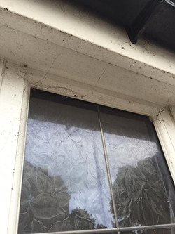 commercial window clean