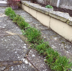 Gutter cleaning Canterbury