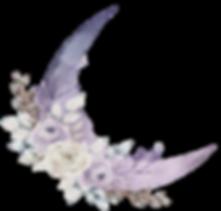 moonlogo2_edited.png