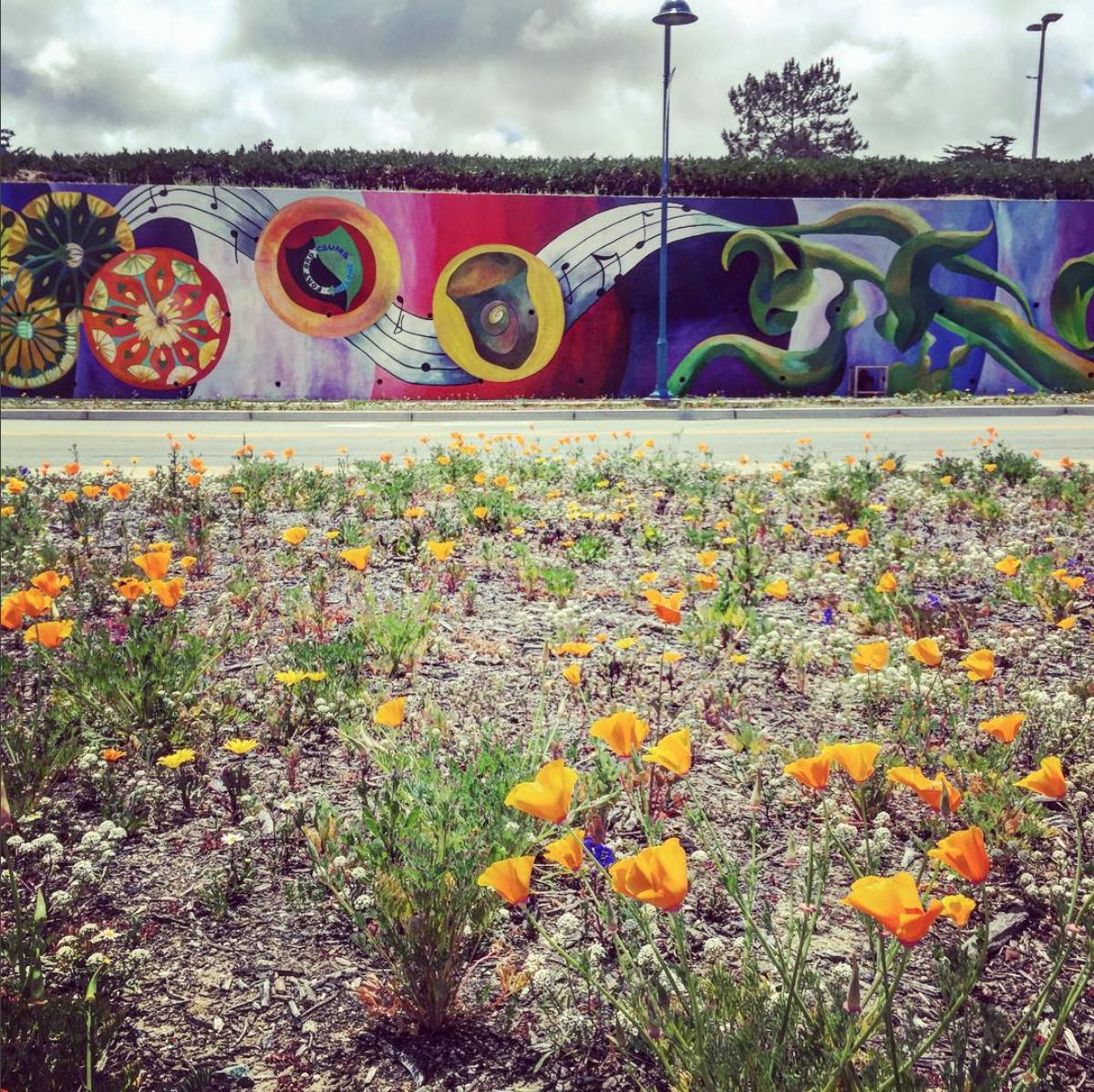Vision Mural