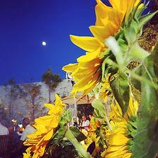 夏の名残の夕涼み✨_「向日葵と月」