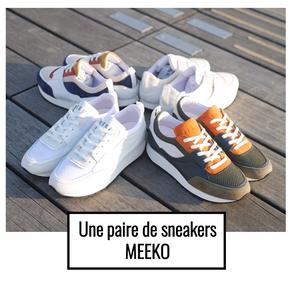 Meeko Récomp.png