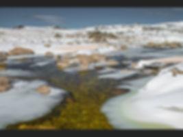 Snowy River Jane Morris Abson.jpg