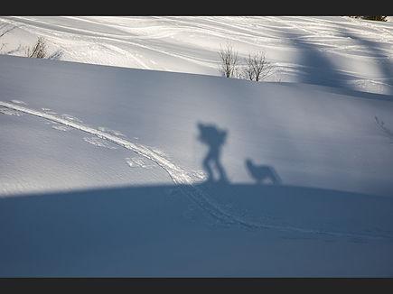 Me and my shadow_John Gilbert.jpeg