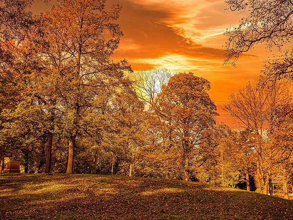 Autumn Sunset - Ian Bowden.jpg