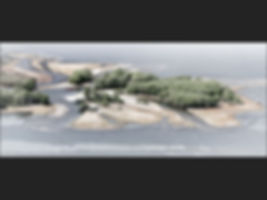 T.Lane. River Island. dpi..jpg