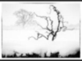 P HC Trees in a Blizzard Trevor Lane.jpg