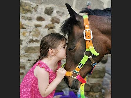 -Love Is Ponies-BarryFogg-.jpeg