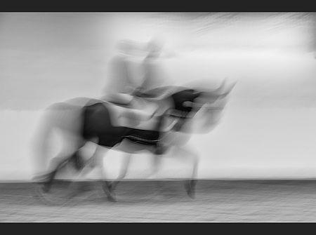 Ghost Horse Jane Morris Abson.jpg