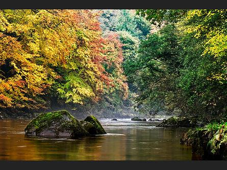 Autumn Swale - Dave Smith.jpg