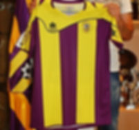 """Camiseta oficial del UD Benicalap 14-15 marca """"Luanvi"""""""