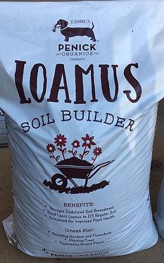 Loamus new bag.jpg