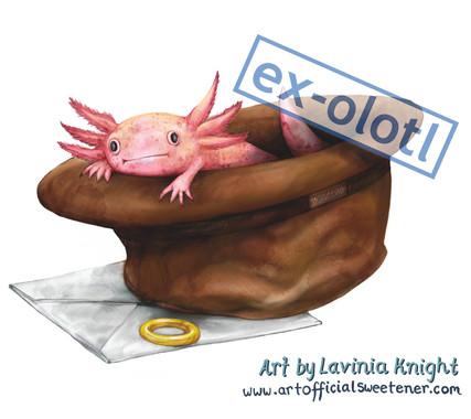ex olotl