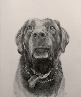 realistic pencil drawing, commission, art commission, pet portraits, family portraits, gifts for people dealing with greif, aniversary pressents, birthday presents, alternative gifts, custom presents