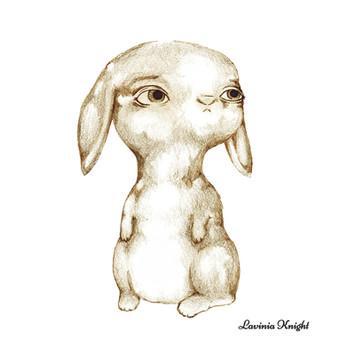 sketchy rabbit