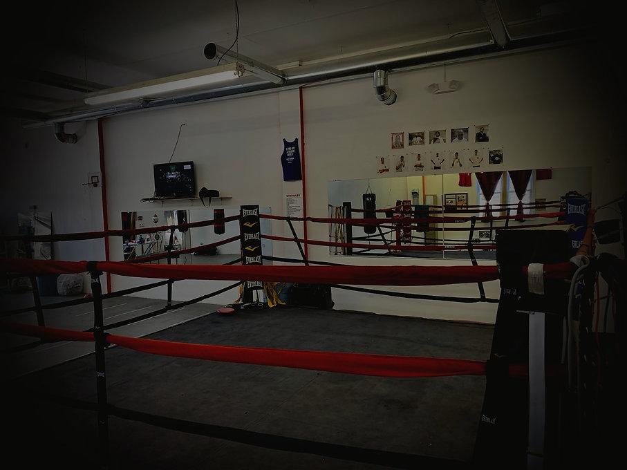 APJ Boxing Club Inc_edited.jpg