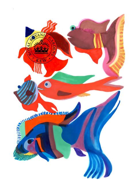 Egypt fish