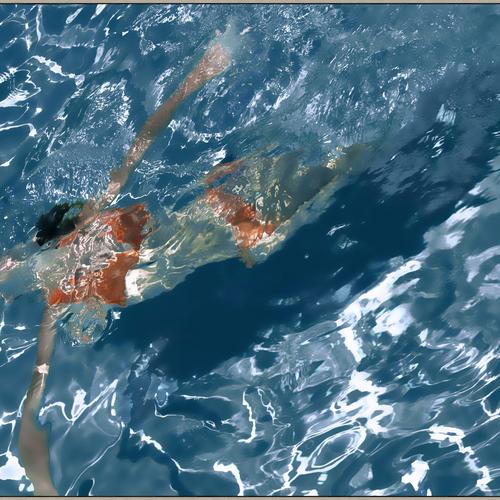 WA Summer Swim 800  60  x 44