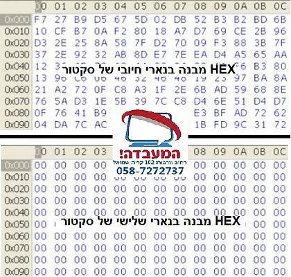 מבנה של HEX סקטור