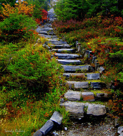 heather meadows staircase signed website-001