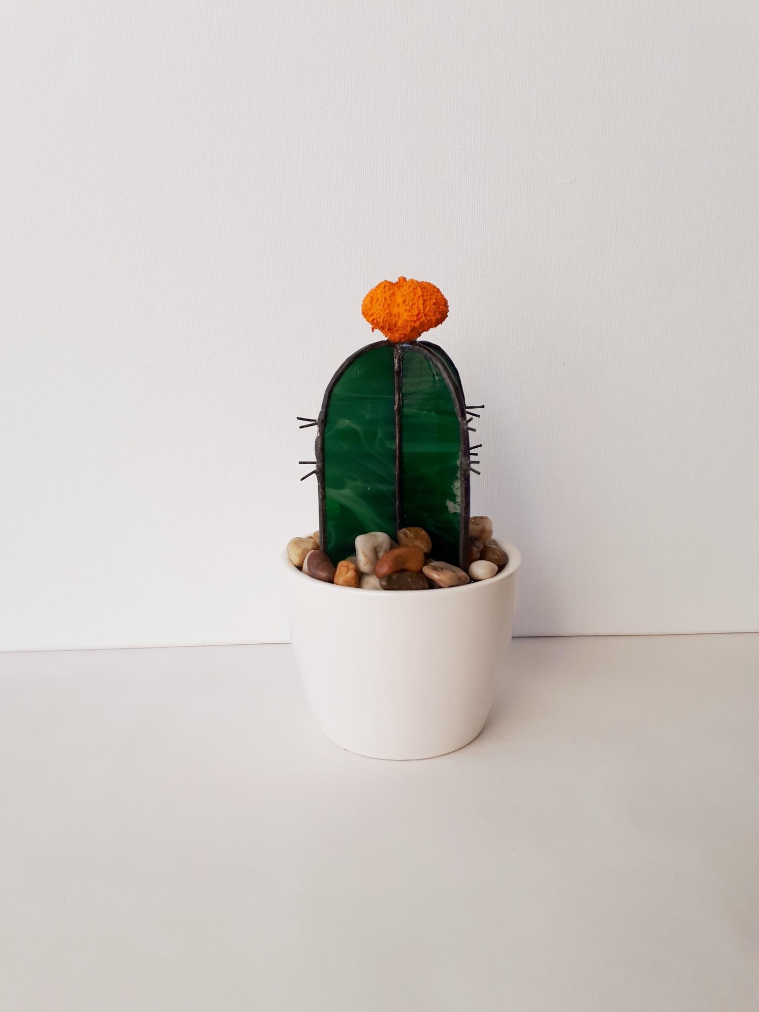 cacti orange flower