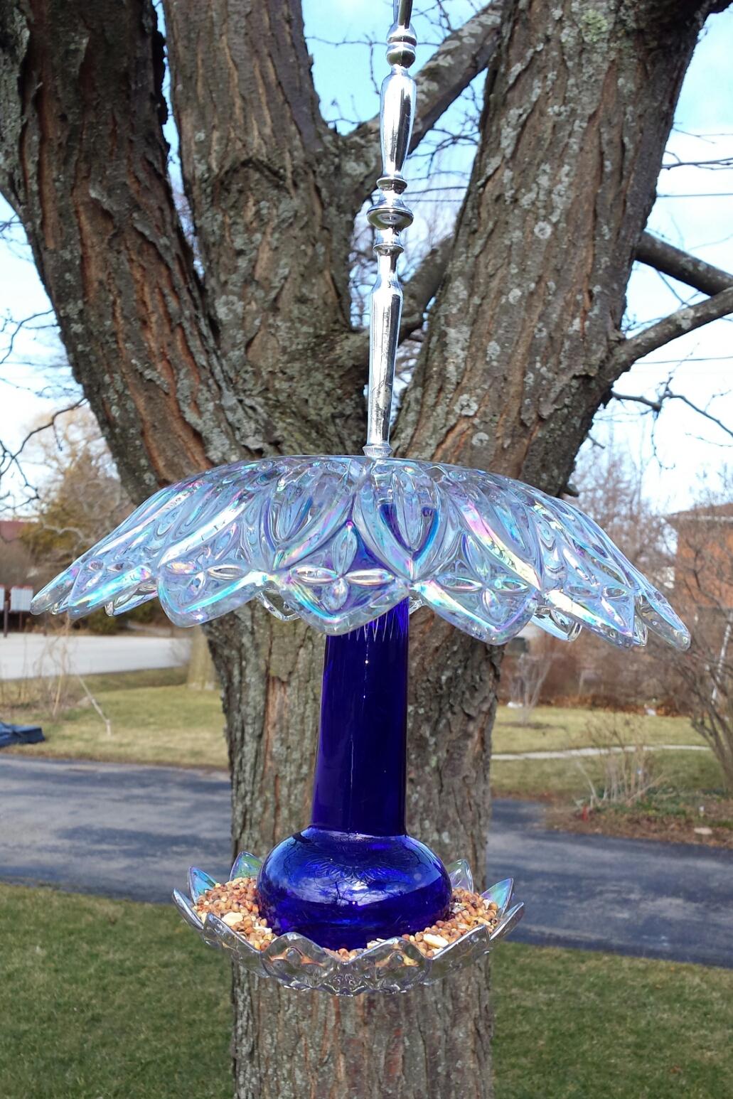 blue bird feeder