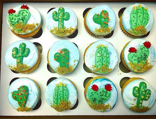 🌵Cactus Cupcakes 🌵#cactuscupcakes #cactus #cacti #succulents #cupcakes #cake #welovecake #happybir