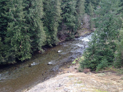 View from the North Umpqua Trail