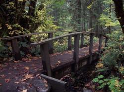 Hiking the North Umpqua Trail to the Hot Springs.JPG