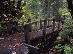 North Umpqua Trail, mountain biking, hot springs, shuttle, tour guide, tours, crater lake