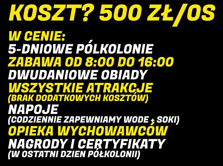 KOSZTTTTT_edited.png