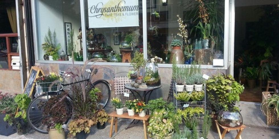 Potluck Brunch and Tea Tasting at Chrysanthemum Rare Teas