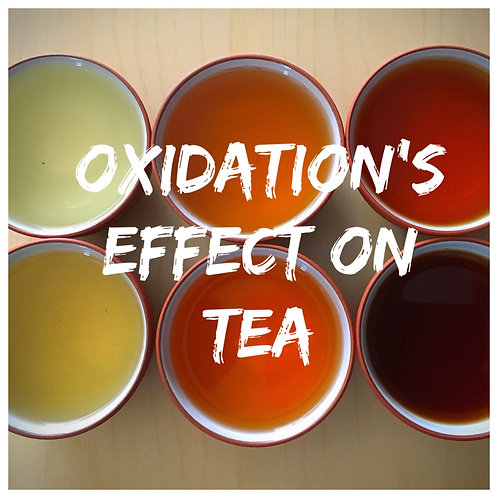 Oxidation's Effect on Tea - PRIVATE