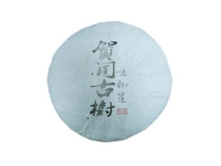 2014 He Kai Shan Raw Puerh