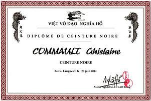 Diplome-ceinture-noire_Viet-Vo-Dao_Arts-martiaux
