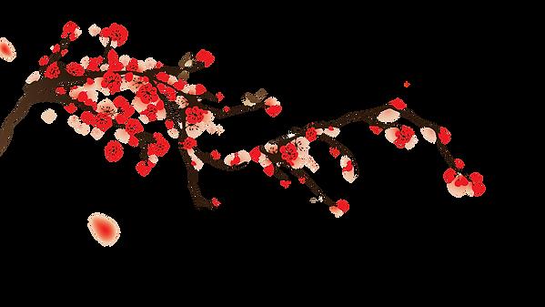 kisspng-national-cherry-blossom-festival
