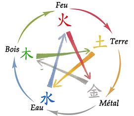 Découvrir le Viet Tai Chi