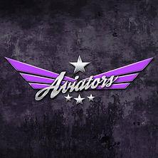 Carnegie Aviators Cheerleading Team