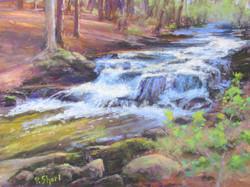 1 Spring Flow on Glowegee Creek.JPG