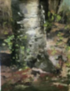 Lisa David birch and Baby Hazelnuts.jpg