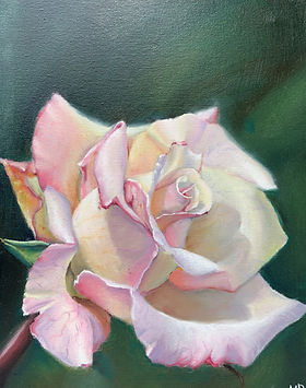 Pale Rose.jpg