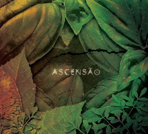 CD Serena Assumpção - Ascensão
