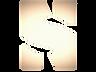 NS_LOGO_SYMBOL_edited_edited_edited_edit