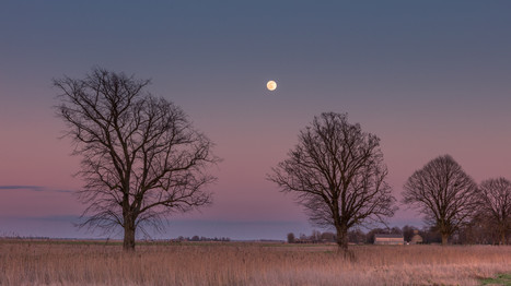 a glaoming moon